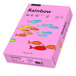 Papier kolorowy Rainbow A4 160g/250ark., nr 55 - różowy