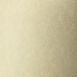 Karton ozdobny Galeria Papieru Standard Granit 220g/20ark. - kremowy