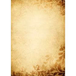 Dyplom Galeria Papieru 170g/25ark. - Amber
