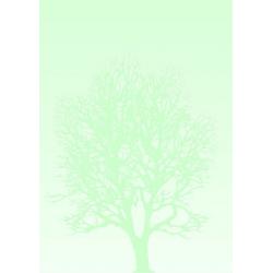 Arkusze barwne Galeria Papieru 100g/50ark. - Drzewo