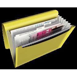 Teczka z 6 przegródkami Esselte Colour'Ice PP - żółta