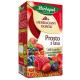 Herbata Herbapol Prosto z lasu (owoce leśne) 20t