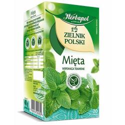 Herbata Herbapol Zielnik Polski Mięta 20t
