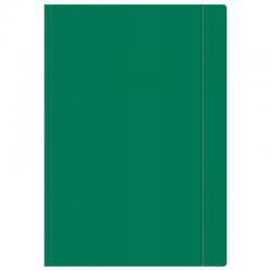 Teczka z gumką Interdruk A4+ - zielona