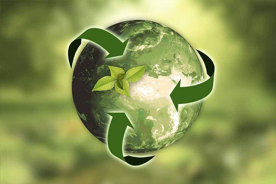 Segregacja śmieci w firmie