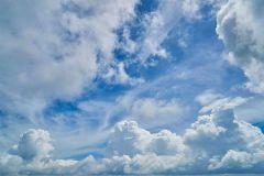 Jak wybrać oczyszczacz powietrza?