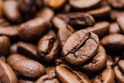 Jakie są gatunki kawy? Przeczytaj i wybierz odpowiedni