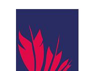 Logo feathers